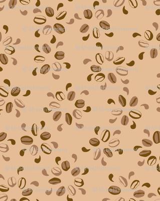 Coffee Blossoms