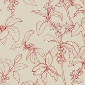 Rarabicacherrynatural_flowers2b_shop_thumb