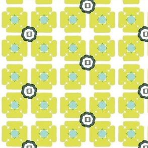 unfolded square lime