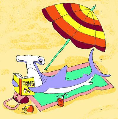 Sunbathing Shark