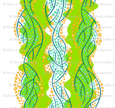 kelp 6