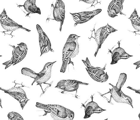 birds fabric by brokkoletti on Spoonflower - custom fabric