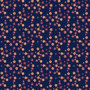 Sakura VII 1877 - Fireworks