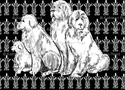 Newfy Black Background Gothic Pattern Wallpaper