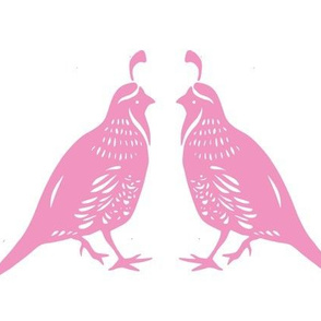 Pink Quail Couple