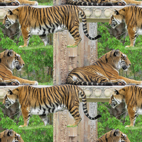 Tiger Allover fabric by eclectic_house on Spoonflower - custom fabric