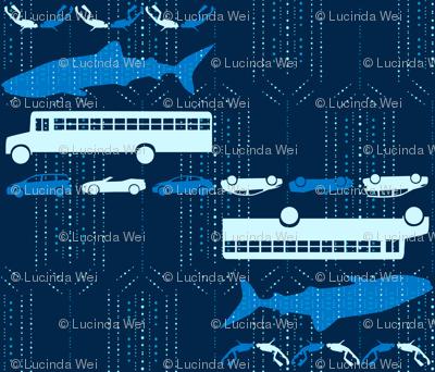 Whale Shark: As Big as a School Bus - © Lucinda Wei