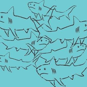 SHARKS-blue