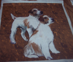 Rrrrparsons_jack_russell_terriers_comment_90187_preview