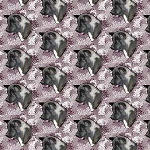Akita Fabric