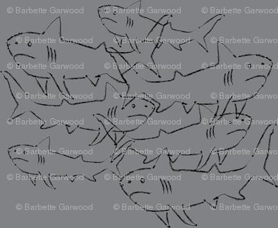 SHARKS-grey