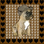 Rrfrench_bulldog_best_shop_thumb