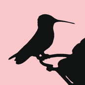 Rrrhummingbirdsilhouette_shop_thumb