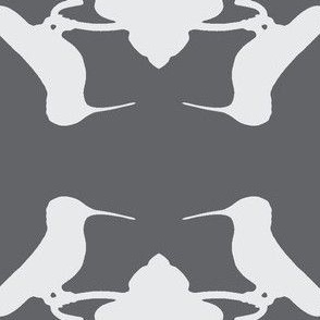 Hummingbird White on Grey