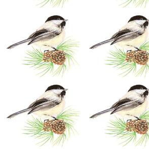 Chickadee & Pine Cone