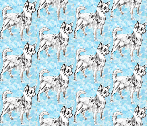 Chihuahua on Aqua Background fabric