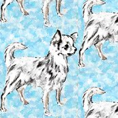Rrchihuahua_aqua_fabric_shop_thumb