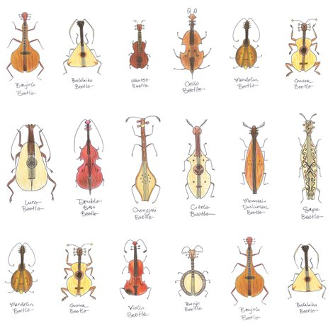 Rstringed_beetles3c_shop_preview