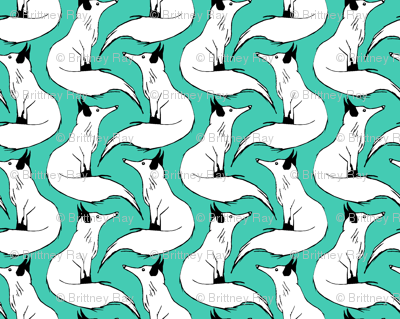 Arctic Foxes on Teal