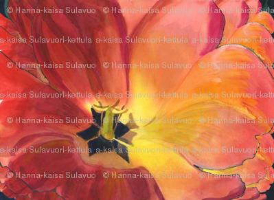 Red_Tulip_by_Karen_Winters