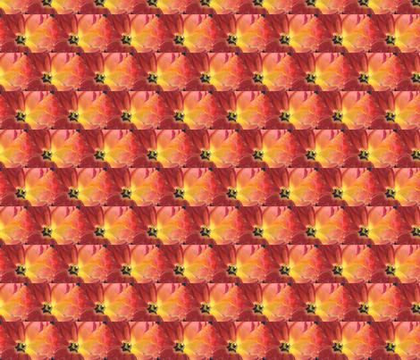 Red_Tulip_by_Karen_Winters fabric by vinkeli on Spoonflower - custom fabric