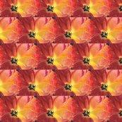 Rrred_tulip_by_karen_winters_shop_thumb