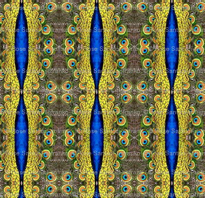 Peacock Kaleidoscope #26