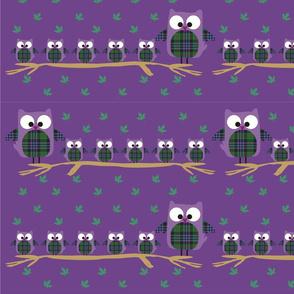 Buho_-_violeta