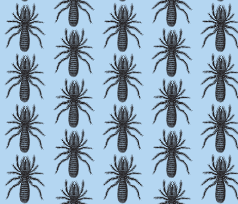 Black on Blue Arachnid fabric by mbsmith on Spoonflower - custom fabric