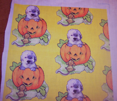 Rrhalloween_labradoodle_puppy_comment_104116_preview