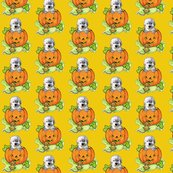 Rrhalloween_labradoodle_puppy_shop_thumb