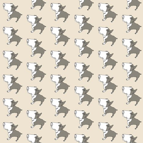 Terry dog fabric by caseysplace on Spoonflower - custom fabric