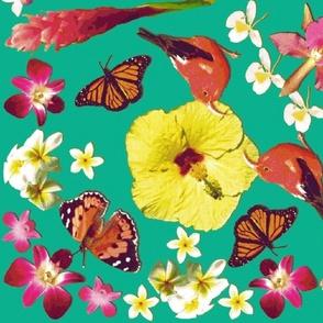 Birds, butterflies and flowers