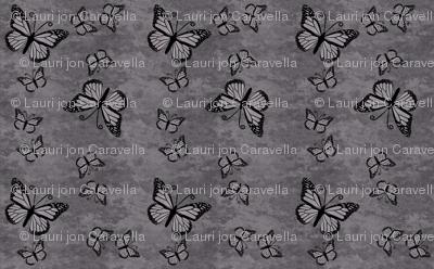 Monarch Butterflies on Gray Granite