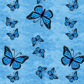 Monarch Butterflies All Blue on Blue Granite