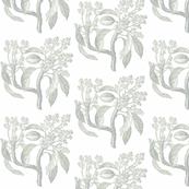Botanical study-mossy grey