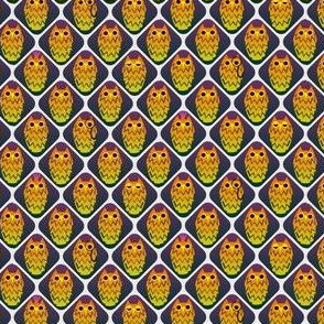 One owl is not like the others, small