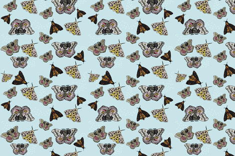 moths fabric by youngcaptive on Spoonflower - custom fabric