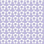 Lavender Daisy-ch