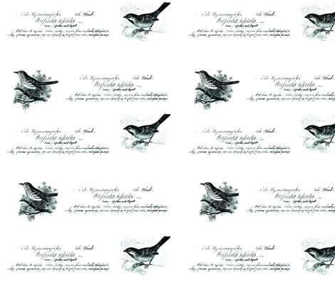 vintage birds 4 color fabric by jennifer_rizzo on Spoonflower - custom fabric