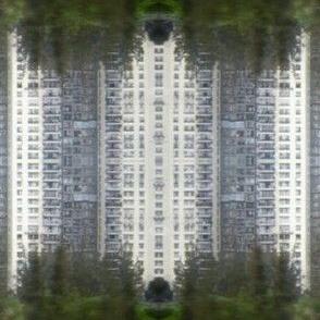 city grown