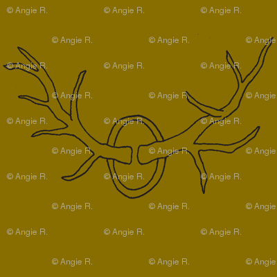 Antlers on Brown