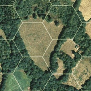 """Aerial view with 3"""" hexes"""
