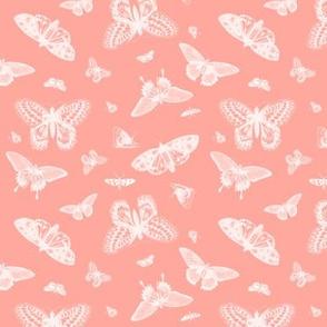 Coral Vintage Butterflies