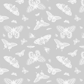 Gray Vintage Butterflies
