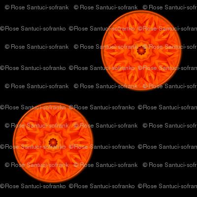 Orange/Apricot Roses Kaleidoscope on black