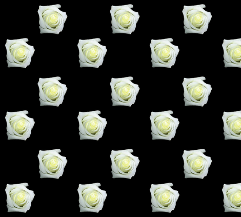 White Roses On Black fabric by artist4god on Spoonflower - custom fabric
