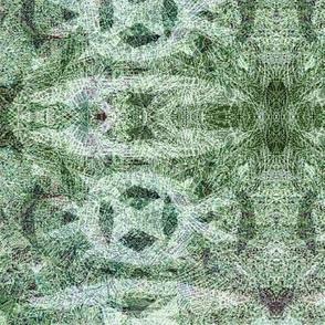 Norse Lichen