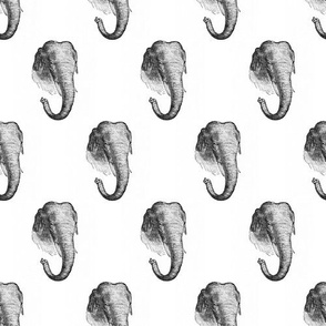 Vintage Elephants - Black and White