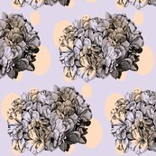 Rrrrhydrangea-dots_ed_shop_thumb